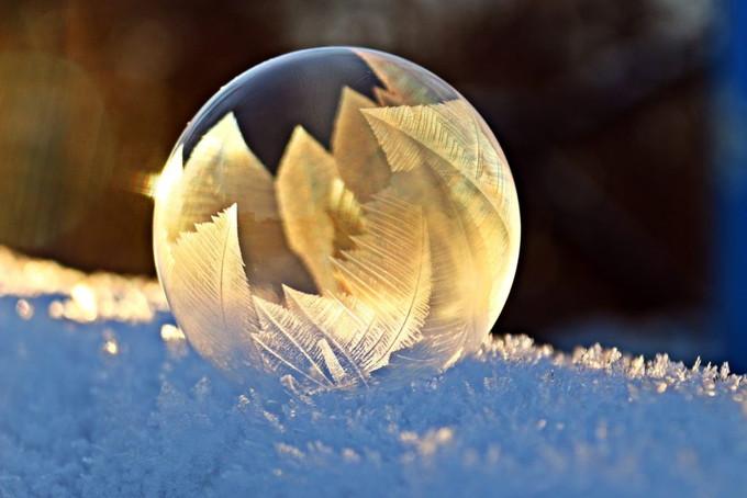 冬期講習の特別個別指導