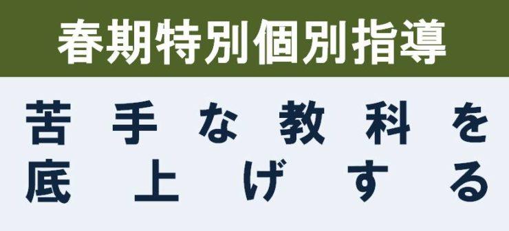 春期講習|広島の個別指導の塾フェイス【大学受験】