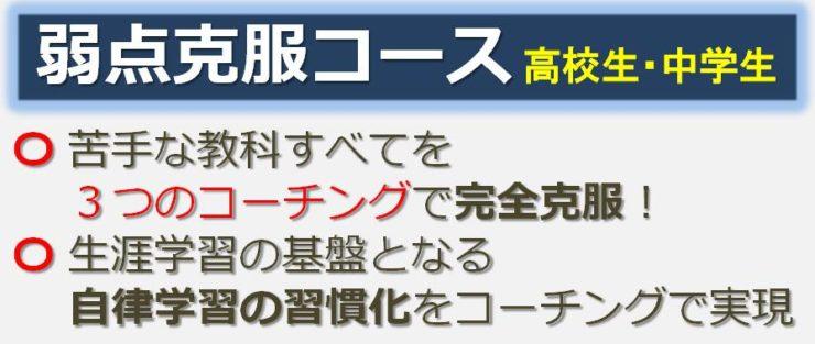 弱点克服コースのご案内|広島の個別指導の塾フェイス【大学受験】