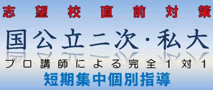 国公立大二次・私大特別個別指導|広島の個別指導の塾フェイス【大学受験】